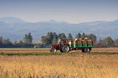 gammal vägtraktor Royaltyfri Bild