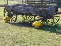 gammal vagn för lantgård Arkivfoto