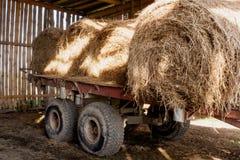Gammal vagn med solbelysta runda baler av hö i gammal lantlig ladugård Royaltyfri Foto