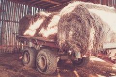 Gammal vagn med solbelysta runda baler av hö i gammal lantlig ladugård Tonat Retro Arkivfoto