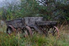 Gammal vagn som glömms i skogen royaltyfri fotografi