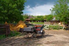 gammal vagnshäst Arkivbild