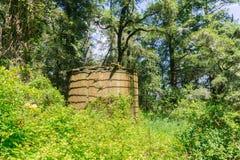 Gammal vattenbehållare i skogen Royaltyfri Foto