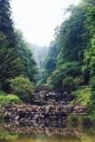 Gammal vattenfall på parkera Bild för kort Royaltyfria Bilder