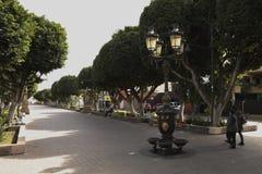 Gammal vattenspringbrunn i Av de los Héroes i Leà ³ n Guanajuato royaltyfri bild