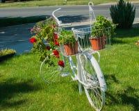 Gammal vit cykel med härliga blommor Royaltyfria Foton