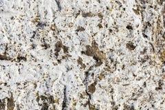 Gammal vit knäckt cementbetongbakgrund Royaltyfria Foton