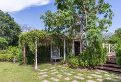 Gammal vit paviljong med murgrönan Arkivfoto