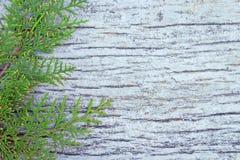 Gammal vit träbakgrund, fototextur Royaltyfri Foto