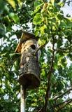 Gammal voljär i trädgården gård för white för USA för hus för tillbaka färg för fågel blå hängande röd Royaltyfria Bilder