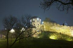 gammal watchtower Royaltyfri Foto