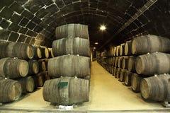 gammal wine för källare Royaltyfri Foto