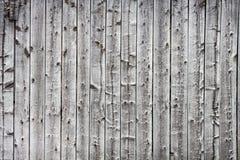 Gammal wood bakgrund Royaltyfri Fotografi