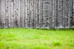 Gammal wood bakgrund med nytt grönt gräs Royaltyfri Fotografi