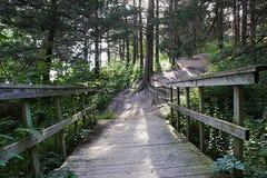 Gammal wood bro på skogsbevuxen slinga i Omaha, NE royaltyfri foto