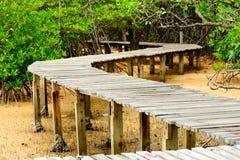 Gammal wood bro på stranden Arkivfoton