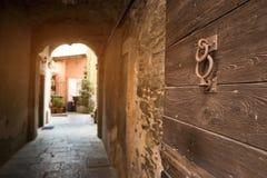 Gammal wood dörr Arkivbilder