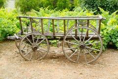 Gammal wood hästvagn för Wine i druvafält Royaltyfri Foto