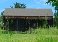 Gammal wood ladugård på en tidig solig sommardag bak högväxta gräs Royaltyfri Fotografi