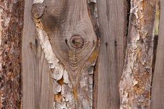Gammal wood planka för makro Arkivfoton