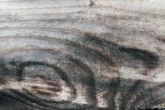 Gammal wood textur Arkivfoto