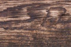 Gammal wood textur, abstrakt bakgrund Royaltyfri Foto