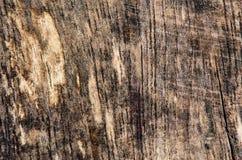 Gammal wood textur för Grunge eller bakgrund, naturlig wood modell Royaltyfria Foton