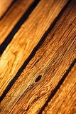 Gammal wood textur i solnedgångljus Royaltyfria Foton