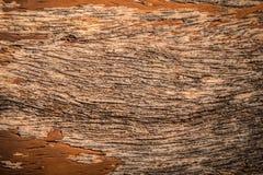 Gammal wood texturbakgrundsyttersida Bästa sikt för Wood texturtabellyttersida Arkivbild