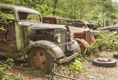 Gammala övergivna bilar på den bryta townen för Opalliten vik. Arkivfoto