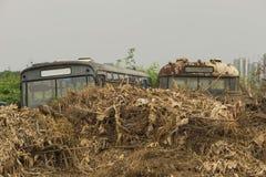 gammala bilar Lämnades på gräsmattan Fotografering för Bildbyråer