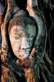 gammala buddha Arkivbild