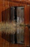 gammala dörrar Arkivfoto