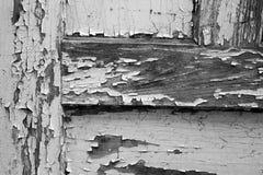 gammala dörrar svart white arkivbilder