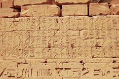 gammala egypt hieroglyphs Royaltyfri Bild