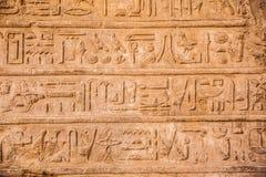 gammala egypt hieroglyphs Royaltyfri Fotografi