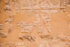 gammala egypt hieroglyphs Arkivfoto