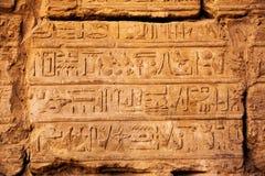 gammala egypt hieroglyphs Arkivbild
