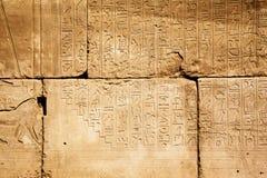 gammala egypt hieroglyphs Royaltyfria Bilder