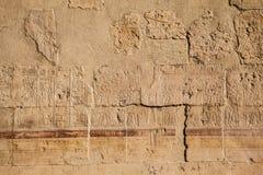 gammala egypt hieroglyphs Royaltyfria Foton