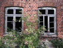 gammala fönster Royaltyfri Bild