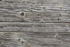 Gammala gråa Wood paneler Royaltyfria Bilder