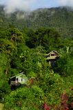 Gammala hus i tropiska kullar Arkivbild