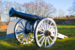 gammala kanoner Arkivbild