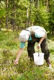 gammala kvinnaträn Fotografering för Bildbyråer