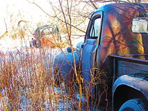 gammala lastbilar Arkivbilder