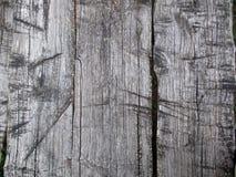 gammala möjliga något yttersida till trä skriver Royaltyfria Foton