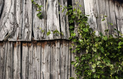gammala plankor Arkivbild