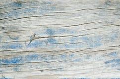 gammala plankor texture trä Arkivbilder