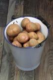 gammala potatisar för hinkgruppemalj arkivbilder